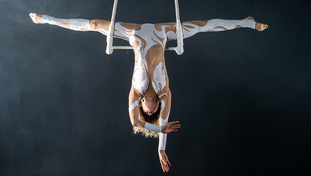 Aerialist on Trapeze